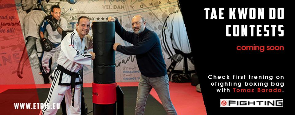 banner_taekwondo3.jpg